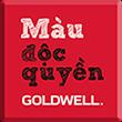 MÀU ĐỘC QUYỀN GOLDWELL